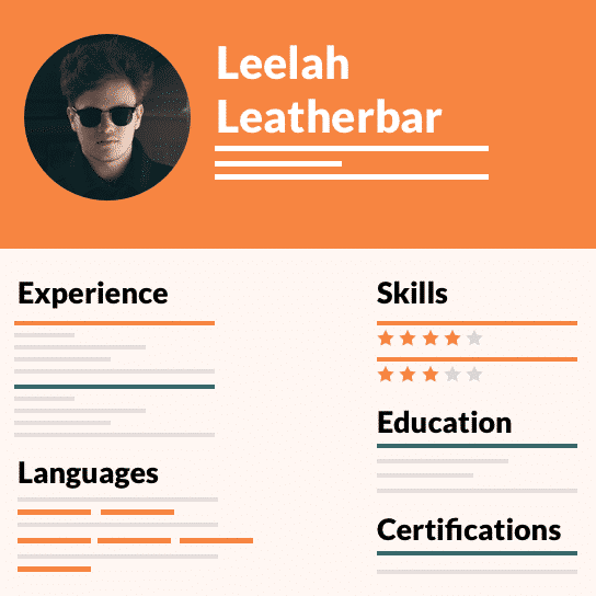 resume example placeholder
