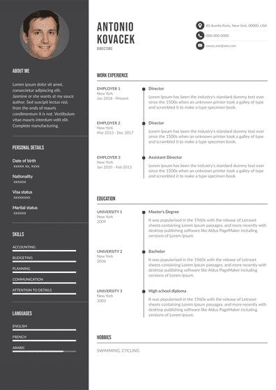 DirectorResume.pdf