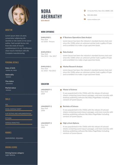 DataAnalyst.pdf