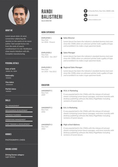 SalesDirector.pdf