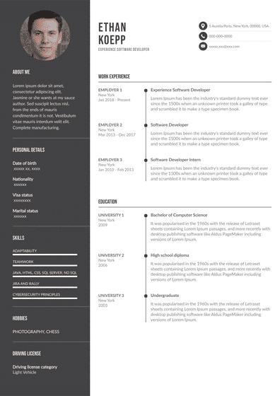 SoftwareDeveloper.pdf