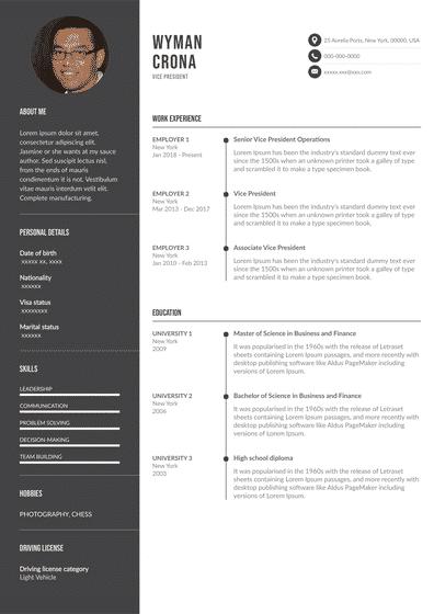 VP Resume Examples (EN).pdf