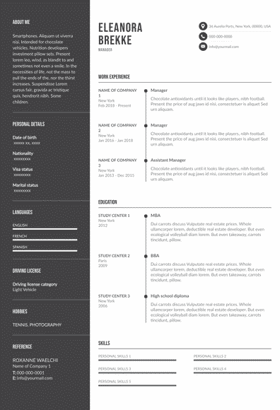 Traditional Resume Example