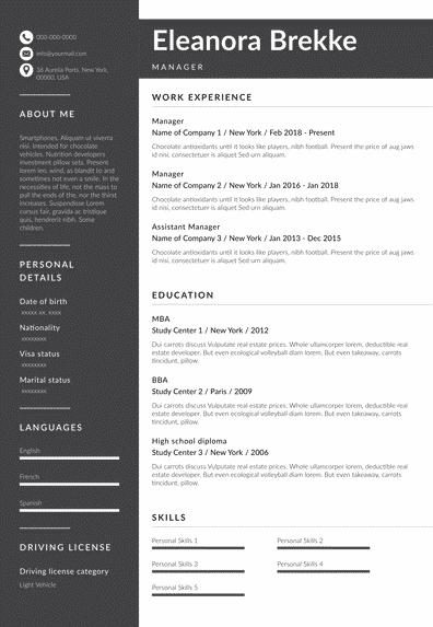 traditional resume model