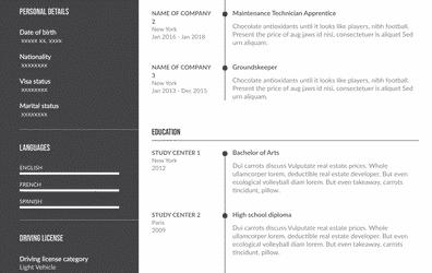 Sample Technician Resume Example