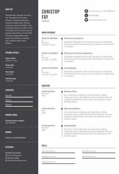 Resume for Technician (EN)-Budapest.pdf